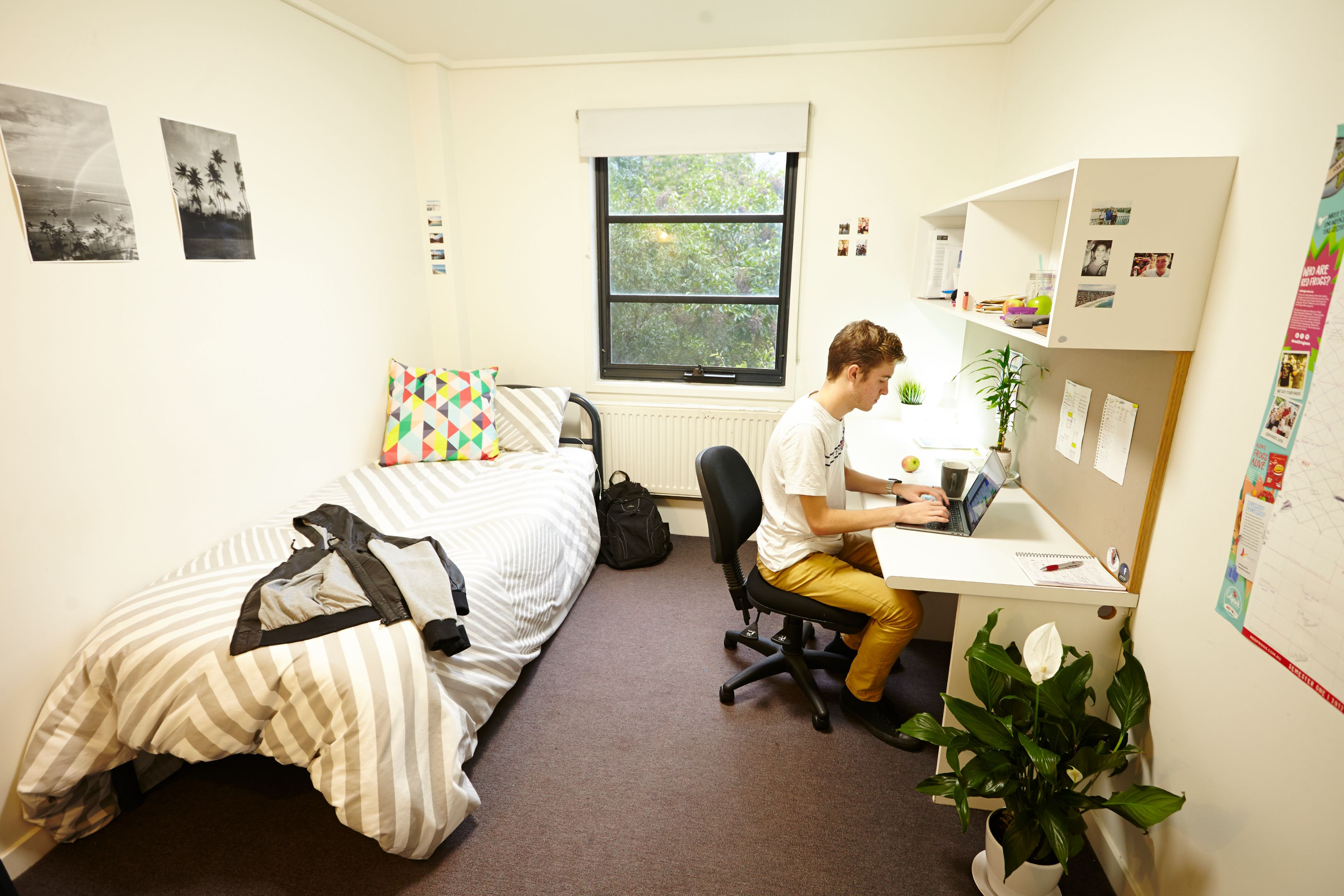 Student studies at his desk in at the on-campus accommodation at